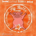 Zamali - Little Buddha (Slynk Remix)